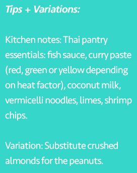 Tips and variations of Thai Skewers