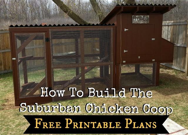 Free Chicken Coop Plans Ssl Family Farm