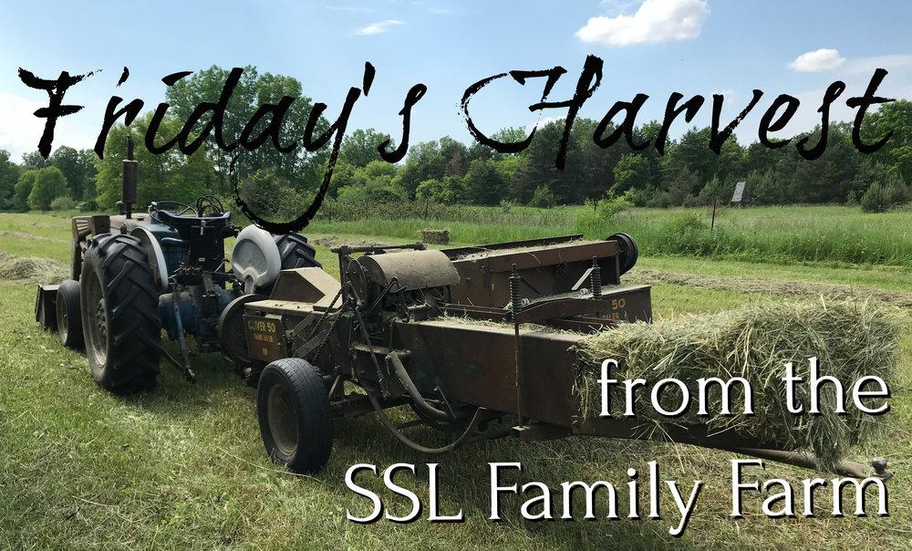 Fridays Harvest 061518 Thumbnail.jpg