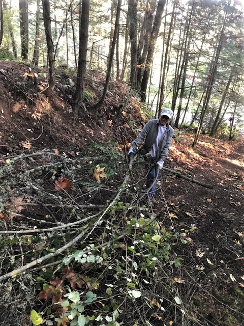 removing brush from the trail