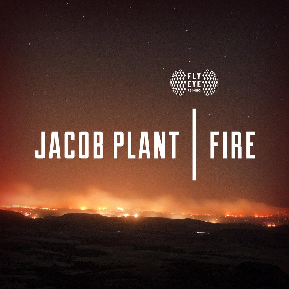 FLYEYE118-Jacob-Plant-Fire-1.jpg