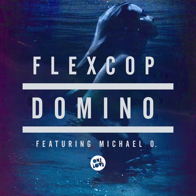FlexCop-Domino-HR.jpg