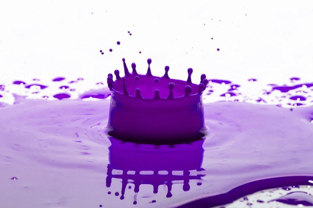 Purpe Splash.jpg