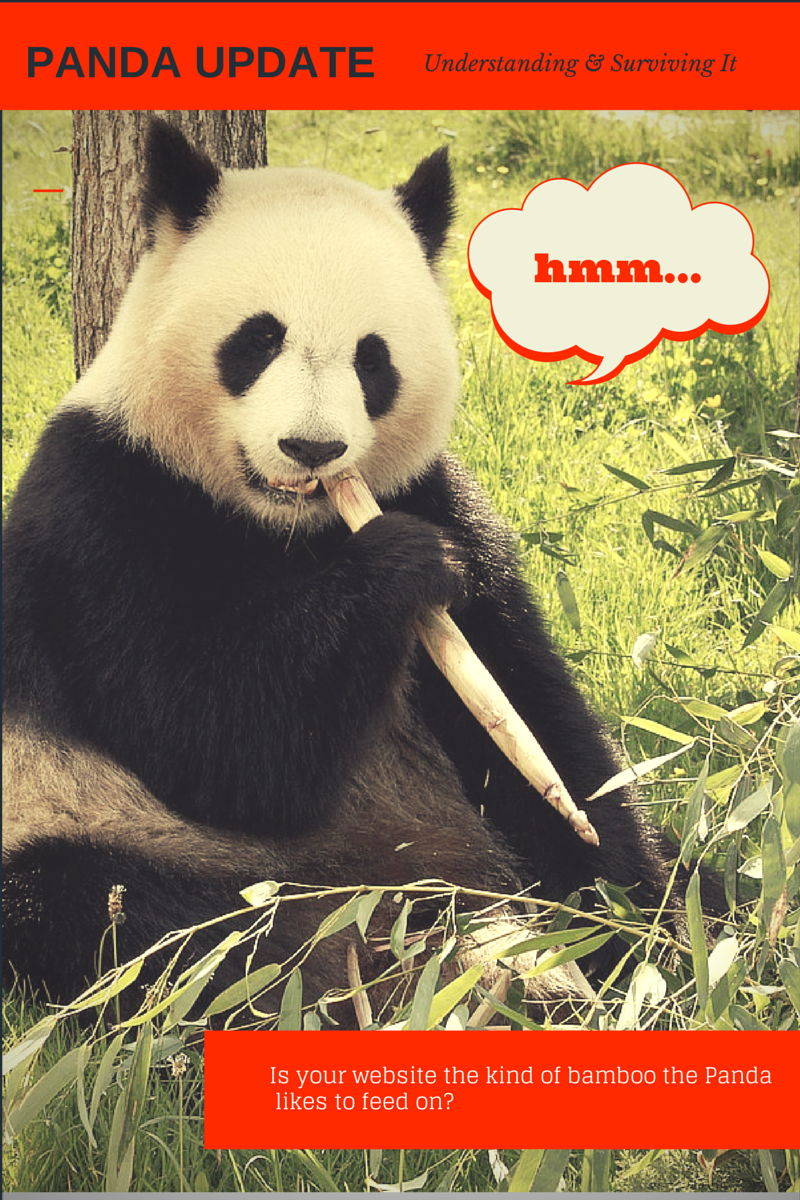 Is your website a feeding ground for the might Panda Update?