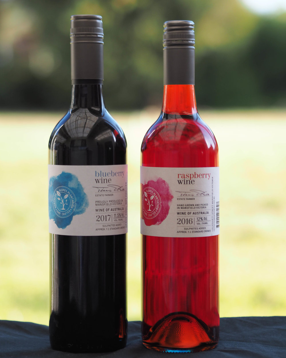 RASPBERRY AND BLUEBERRY WINE GIFT PACK SPECIAL! - $50 per twin pack