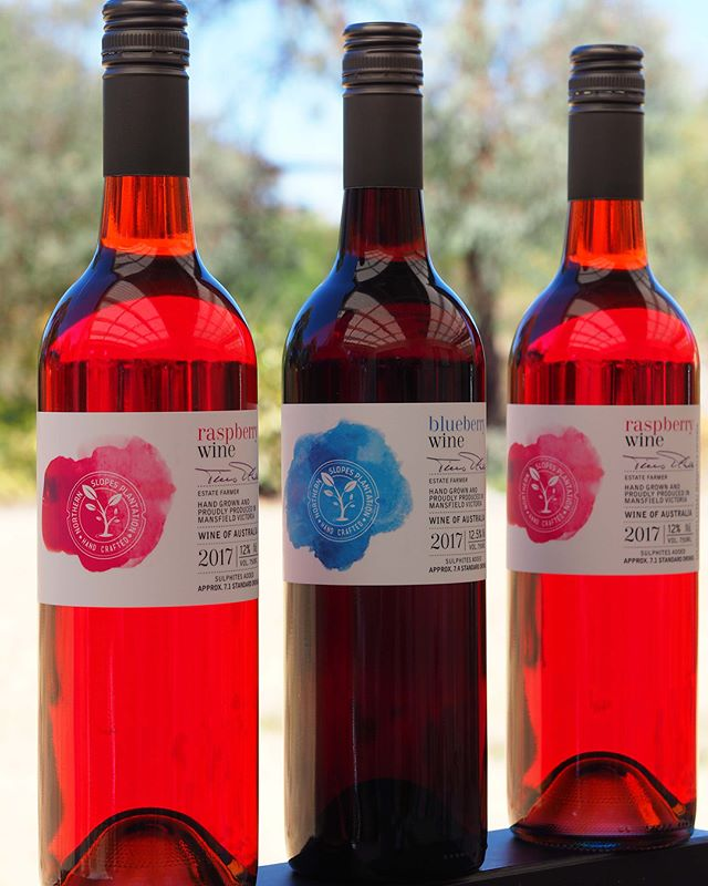 **WINE TASTING tomorrow at FoodWorks Mansfield!! Come and try our delicious Raspberry Wine and Blueberry Wine this Friday in the Liquor Department from 4pm until 7pm. See you there! #winetasting #raspberrywine #blueberrywine #northernslopesplantation #trybeforeyoubuy #mansfieldproducers #shoplocal #mansfieldfoodworks
