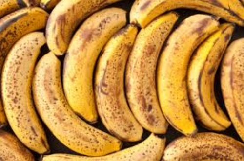 Perfectly edible loose banana are rejected in stores and are left out to rot