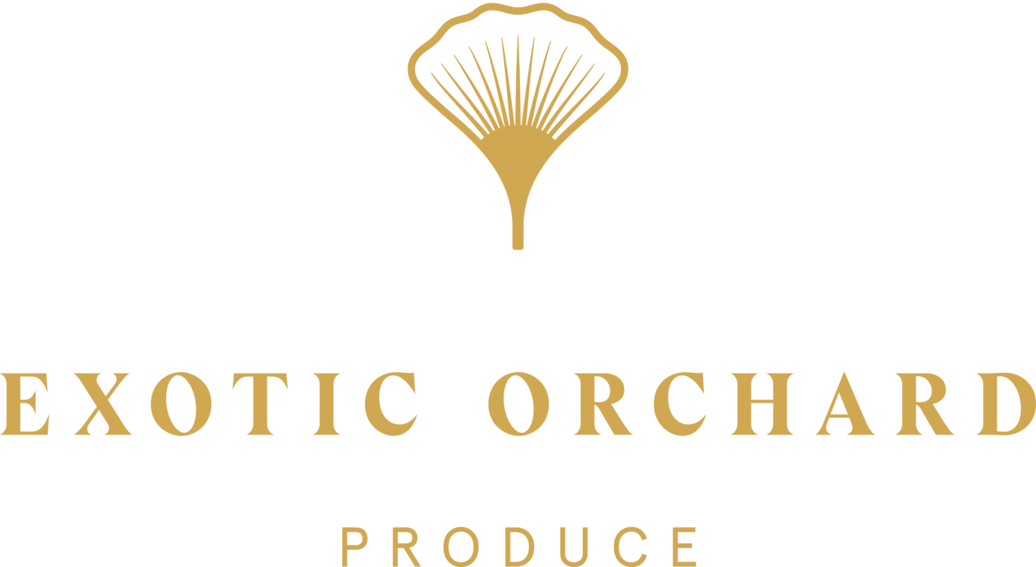 Exotic Orchard  | Produce Distributor