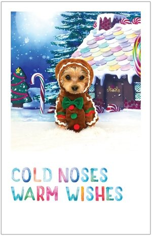 Cold Noses Warm Wishes Christmas Card Pack Of 10 Ezra The Yorkie