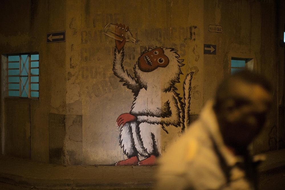 havana nights-19.jpg
