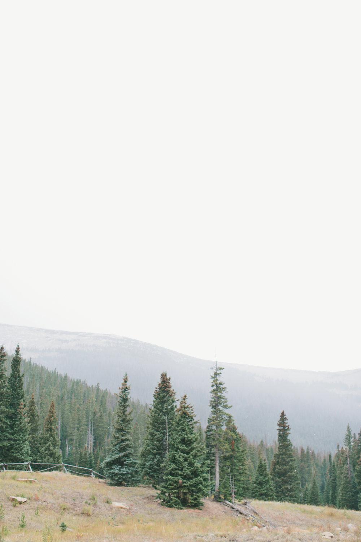 Colorado 2.JPG