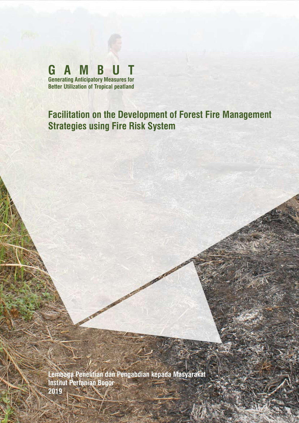 Facilitation on the Development of Forest Fire Management Strategies 1-1.jpg