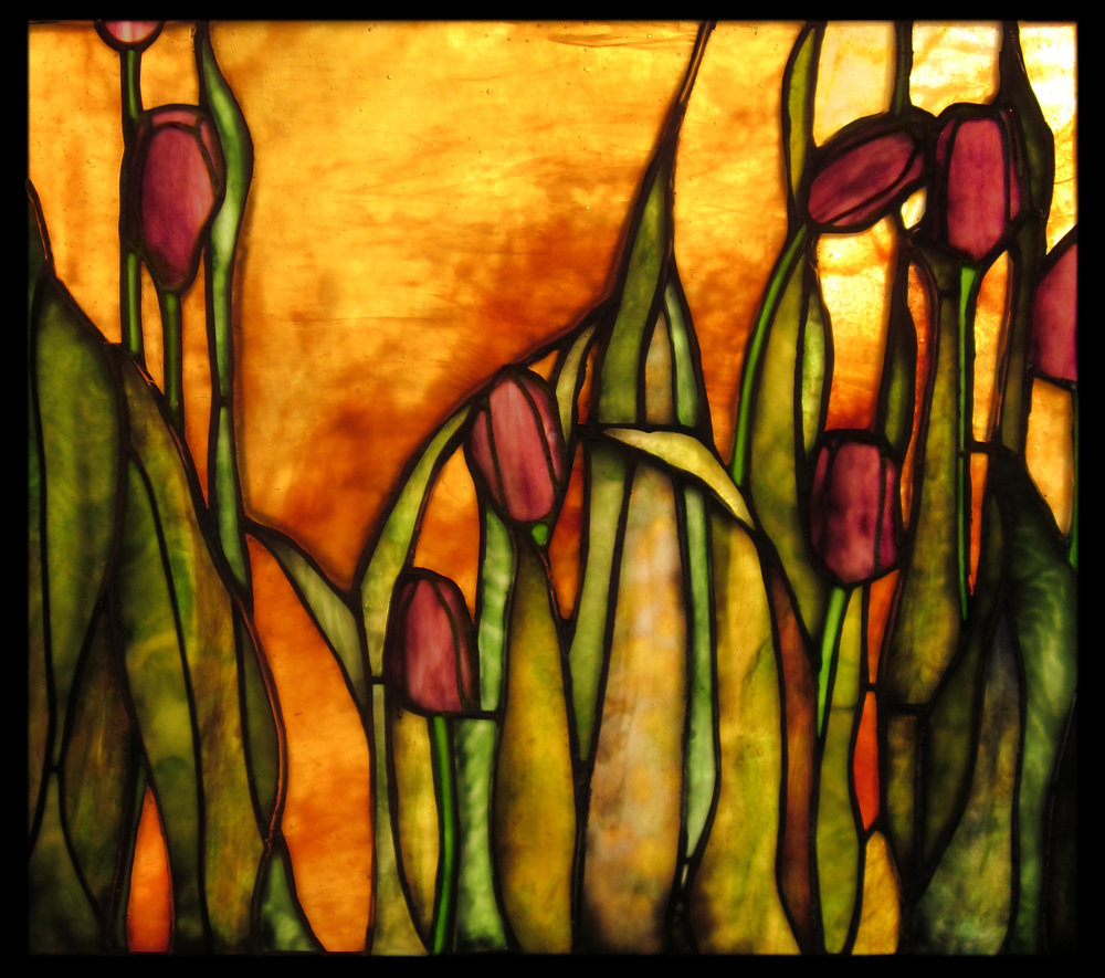 tulips_at_sunset.jpg
