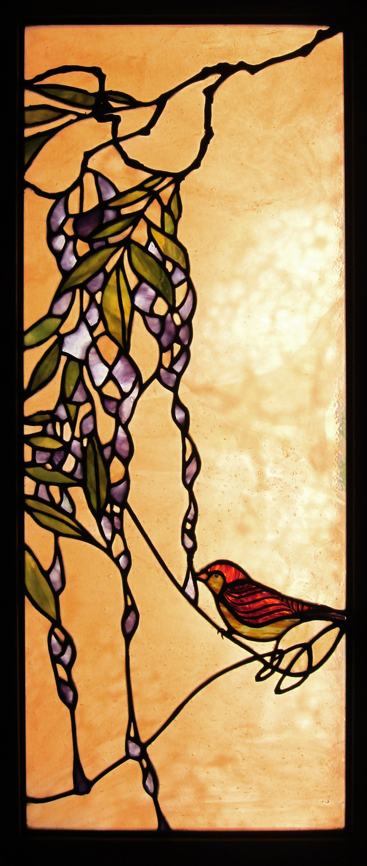 bird_wisteria.jpg