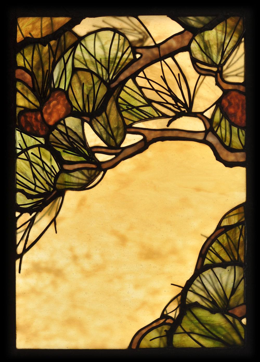 pine_needle_window.jpg