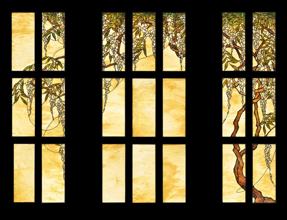 nelsen wisteria_entry.jpg