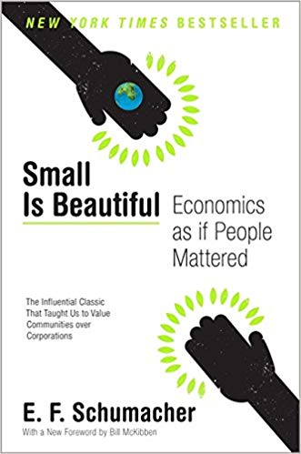 Small is beautiful_Book_Module 8.jpg