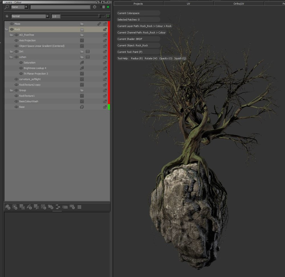 I have been working on some test assets in Mari. Painting up textures for a rock and a tree, baking out maps from Renderman for AO and curvature