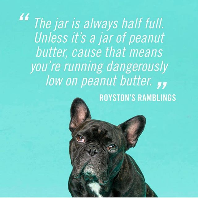 PAWS FOR THOUGHT. It's Royston's (almost daily) Ramblings. #OneSweetPup