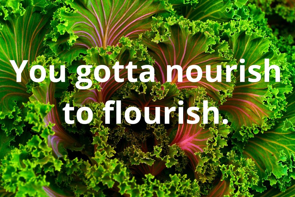 Nourish to Flourish.jpg