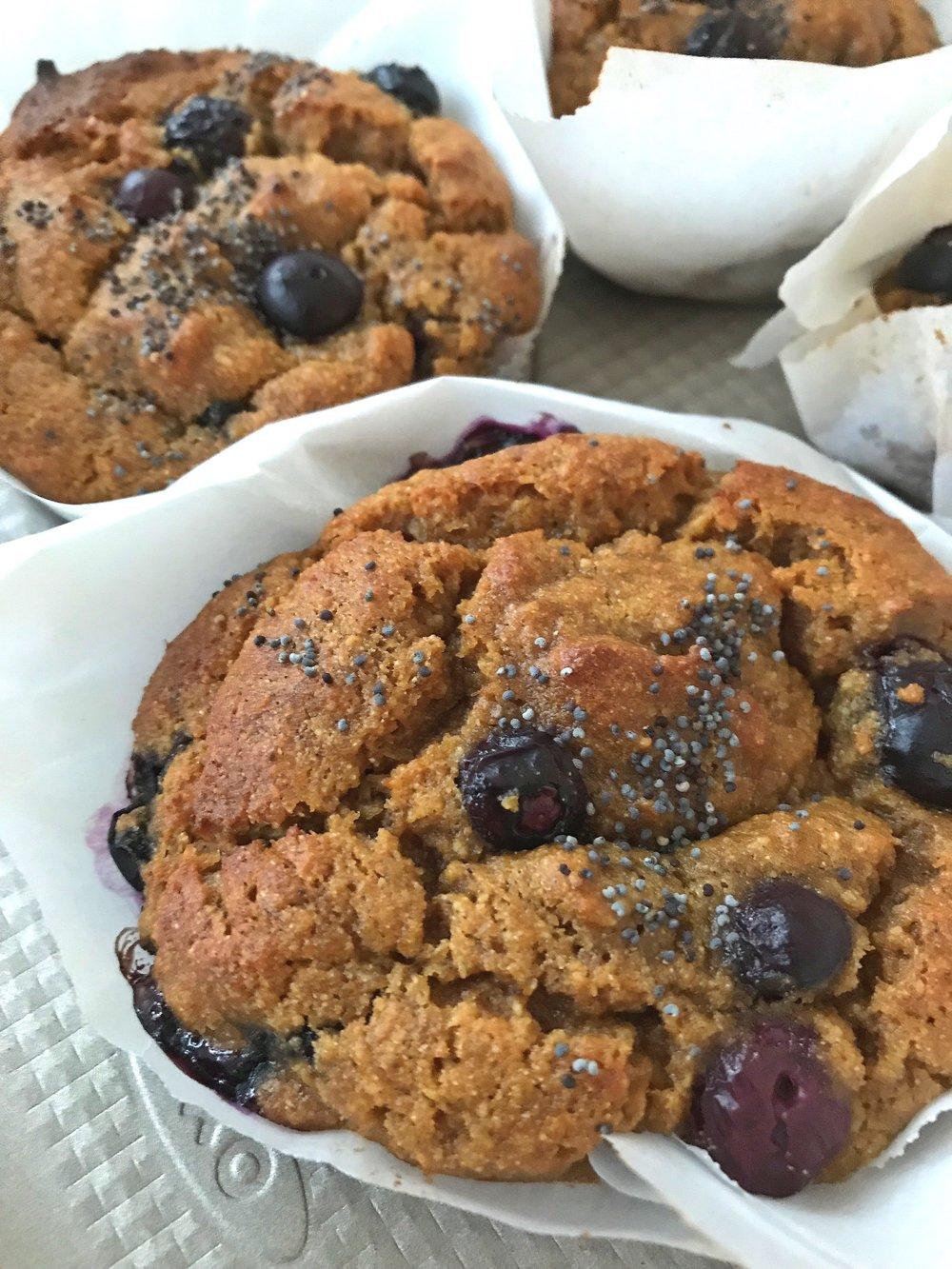 Muffins made with fresh organic blueberries. Photo credit @thomsgarth