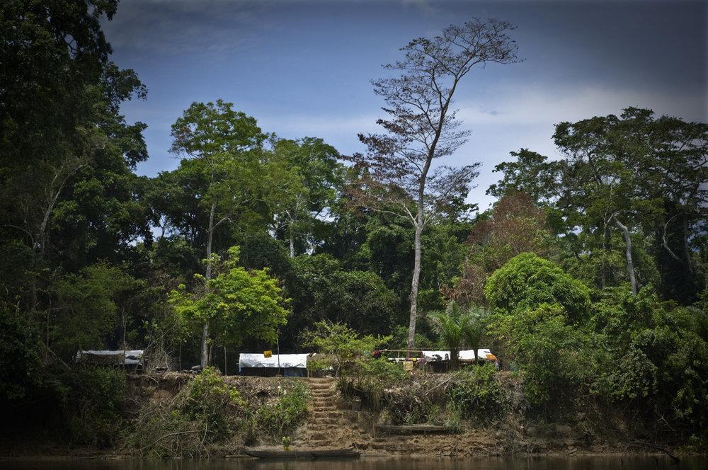 02 Congo_3856NOY.jpg