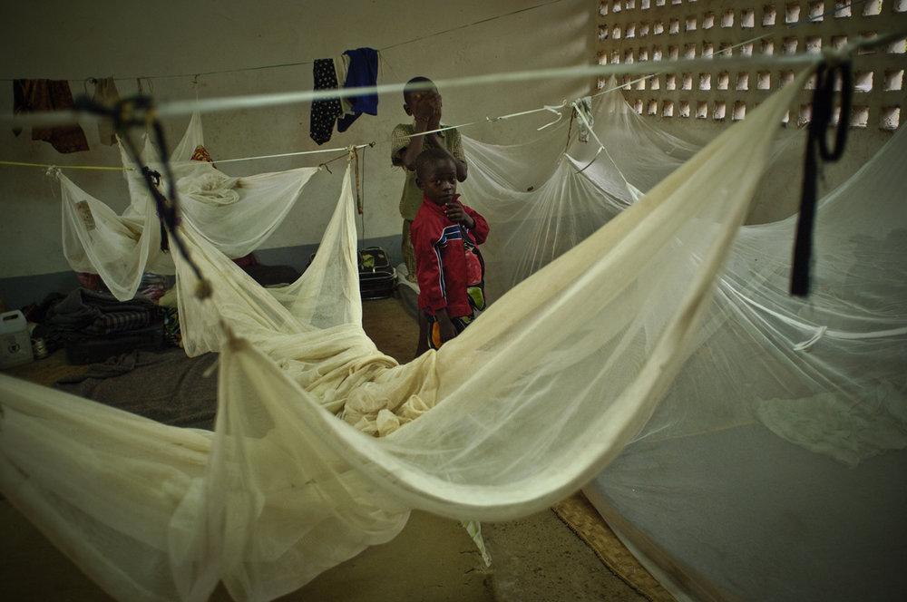 22 Congo_3534NOY.jpg