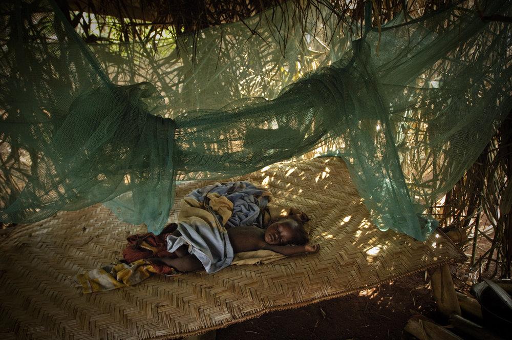 60 Congo_3059NOY.jpg