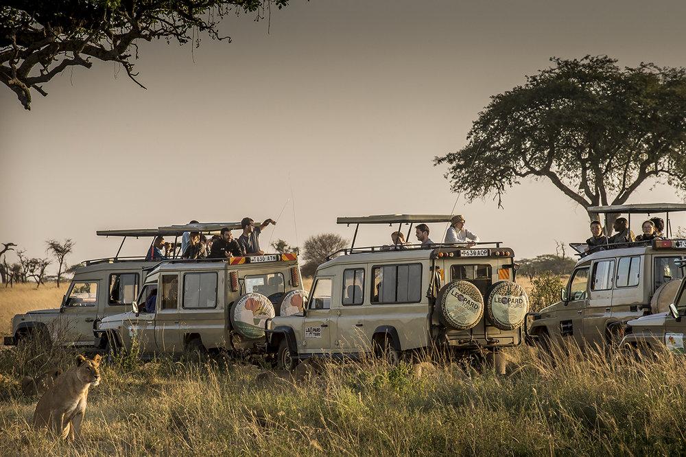 Serengeti06.jpg