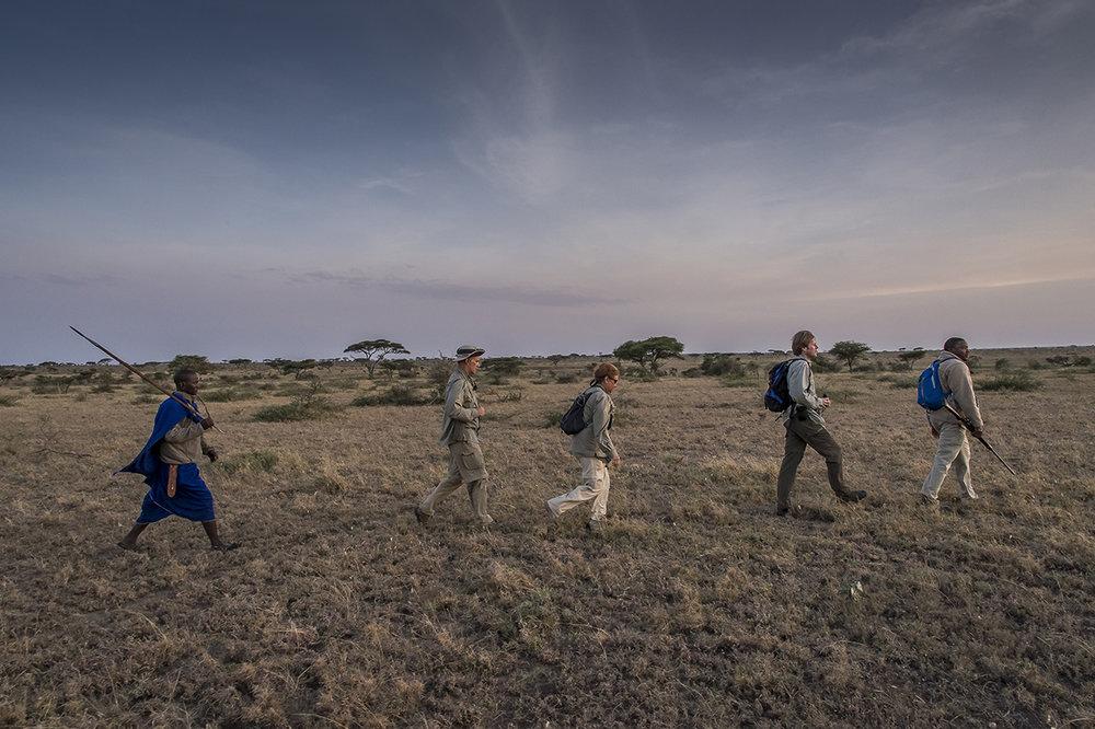 Serengeti16.jpg