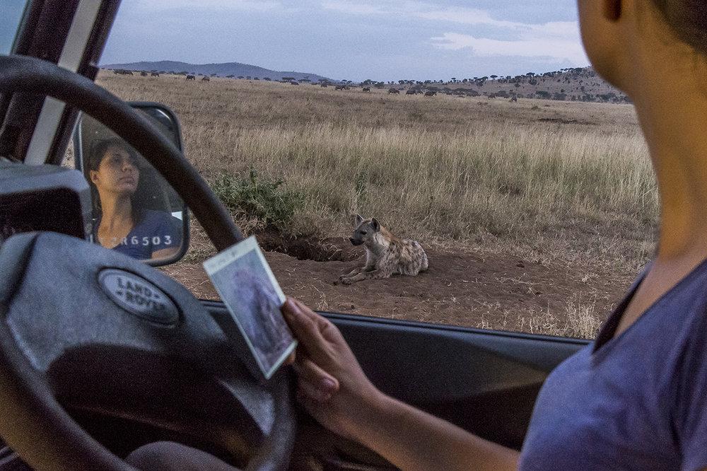 Serengeti20.jpg