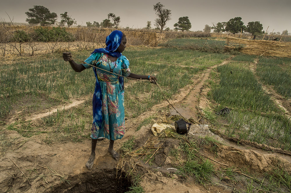 Nakoulouta village, Ouara district. A female farmer waters her piece of land planted with onions by emptying a bucket in the network of channel fit out around the different square of land of cultivation. Her family rents the plot with the well in Sudanese pounds. Close to the border, many transaction are done using that foreign money, although the official currency in Chad is the CFA Franc. Often, people prefer to shift the plot following every harvest, which cause a change in the planted crop. Following onion come rocket, salad, gombo, garlic.