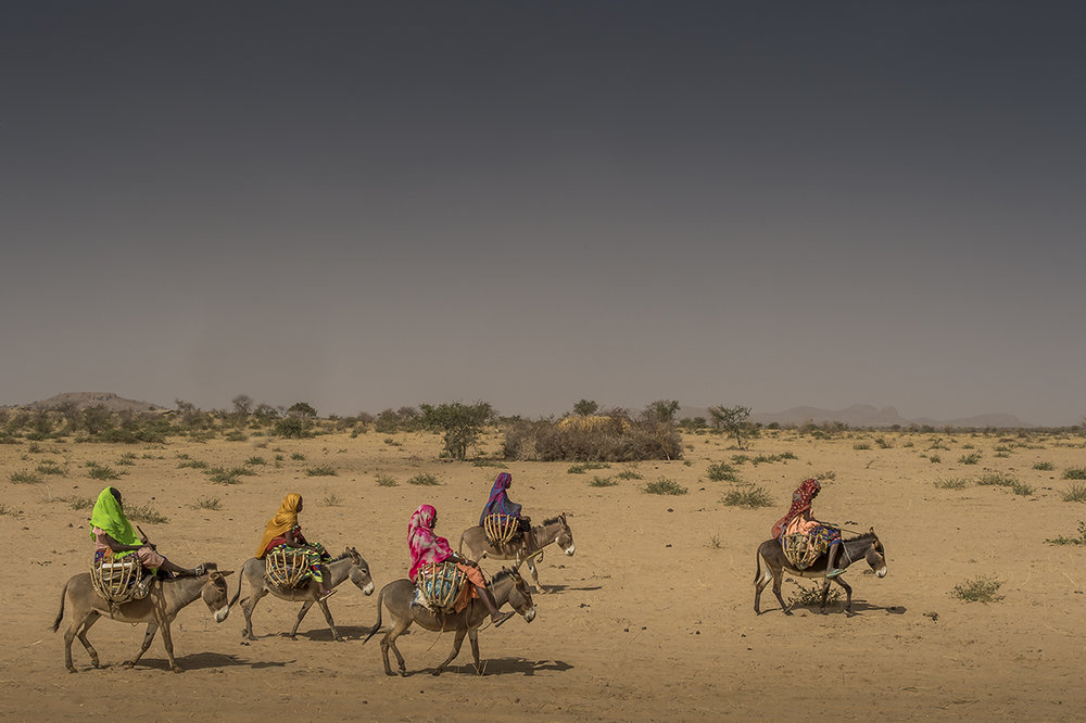 Sunday morning, in the vicinity of Hadjer-Hadid, a group of young girls rides their donkeys to pay a visit to a friend in a neighbouring village.