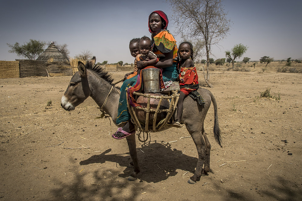 In Kouchaguine village, in the wadi Hamra (red in chadian arabic), in Ouara district, Houra Hassan, 27 years old and her three daughters, ride back from the wadi where they went to collect water. The wadi is called red because, during the rainy season, a red mud is carried along by water coming from Sudan, giving an ochre color to the river. In her arms, Houra holds Mariam, 9 months, while Adijo, 3 years holds the neckline of mount. Behind her mother, Adija, 5 years holds on to the saddle. The girls have successively suffer from malnutrition, during a period when Houra had difficulties to feed herself, thus to produce milk. She learnt the existence of malnutrition in the Health Center. She ignores its existence before, thinking that her daughters were « only » sick. In the future, she would liker her daughters to go to school, then to get their own plot, as she does. Presently, there is not school in the village as the parents did not manage to gather enough money to pay for a teacher.