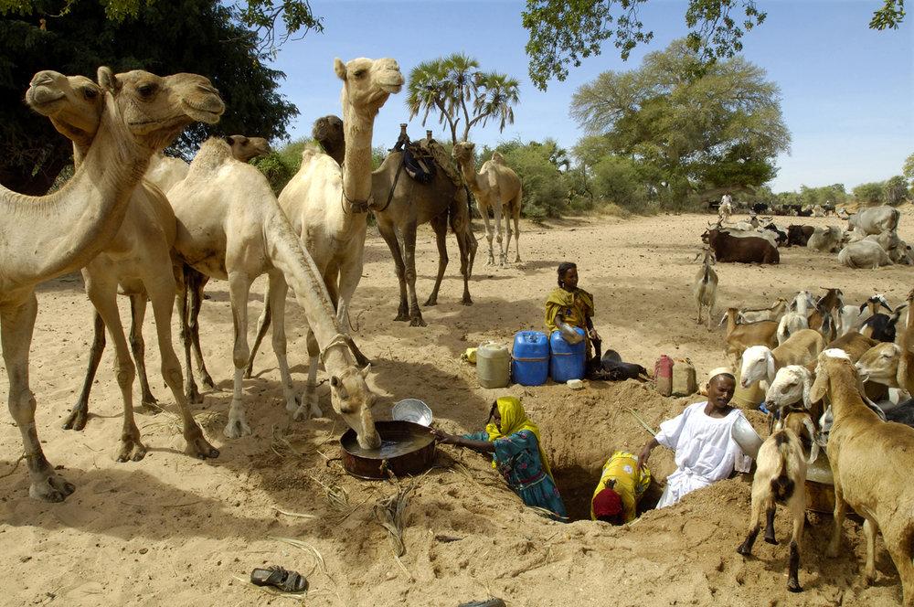 Darfur(s), 2005-07