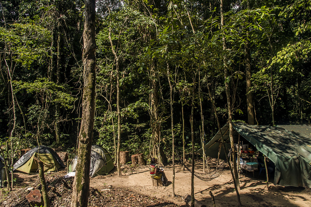 "In the middle of the clearing pruned in the heart of the tropical forest to build ""Camp Boyé"", the cook takes a break and lazes in the sun. There are two small eco-camps in the region, one managed by the Wild Chimpanzee Foundation (WCF) ""Camp Boyé"" and the other by the Ivorian Office of Parks and Reserves, which is the national Ivorian authority . Approximately 150 visitors are staying in one or the other during a year."
