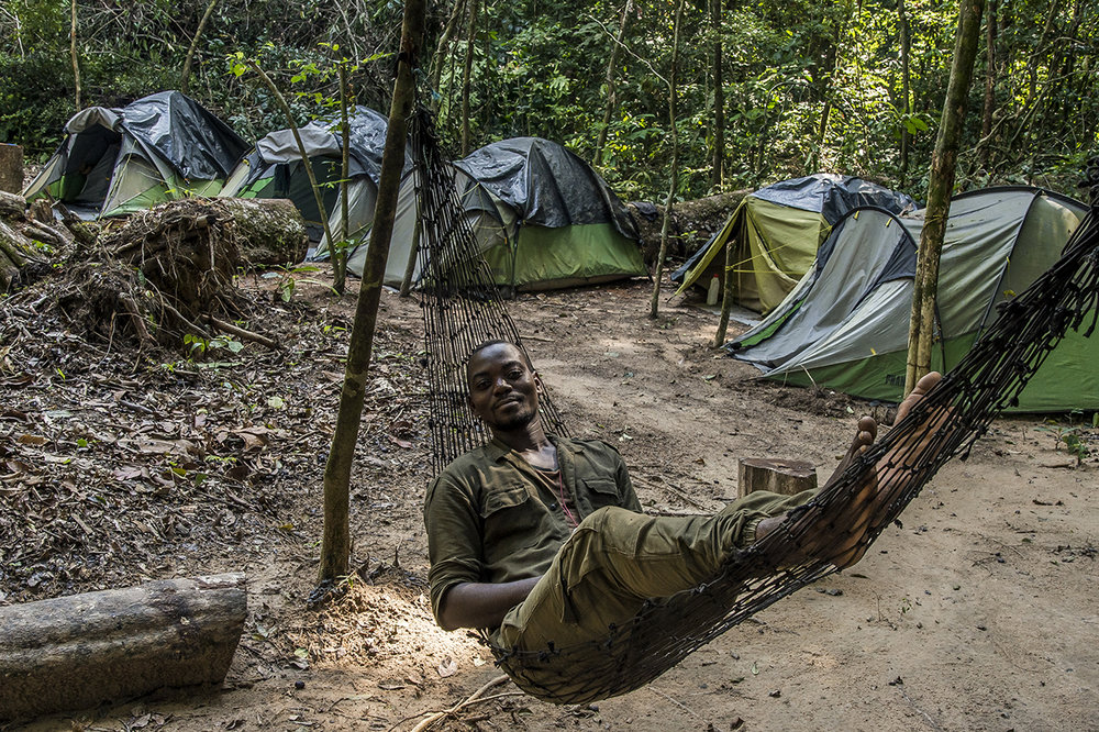 """In the clearing in the middle of the tropical forest where """"Camp Boyé"""" is located, an eco-camp run by the Wild Chimpanzee Foundation (WCF), an eco guide lyes in a hammock in front of the tents row where its colleagues and he spend the nights. Behind the tents, already begins the rainforest."""