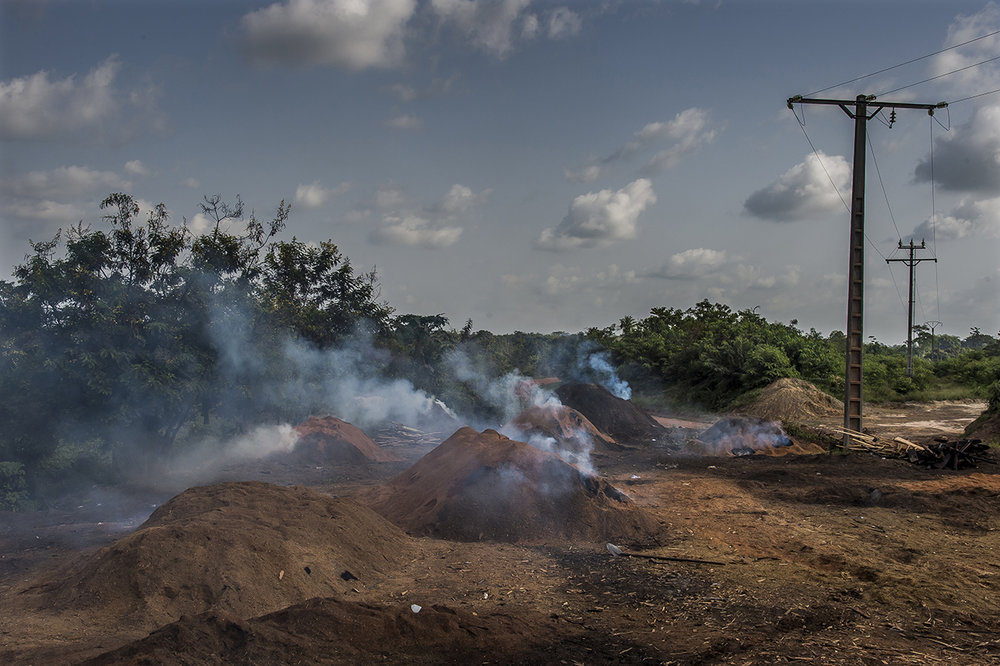 "On the outskirts of the village of Guiglo, charcoal kilns, fueled by wood waste from the forestry industry smoke. The charcoal thus obtained will be sold on the markets of Abidjan at 10 hours of roads from there.  One of the biggest threats to chimpanzees today is the loss of their living space: the African rainforest. Many hectares of forest are destroyed by fire to obtain fields allowing farmers to grow cereals and other fruits of the fields. When the soil is exhausted and the cereals no longer grow, they continue their advance on the forest. But if the forest has been destroyed, chimpanzees have no more space to live. They have to choose between migrating in turn, or dying.  In 2008, the Ivorian Society for the Development of Forest Plantations (Sodefor) estimated that 300,000 hectares of forests are disappearing each year as a result of the ""misuse"" of wood, linked to coal production or tree cutting for the export of precious woods."