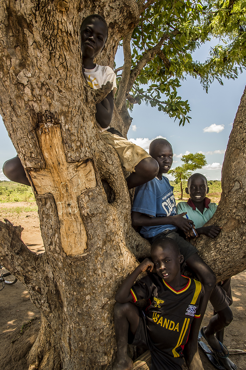 The Anglican church of Bidibidi South Sudan refugees settlement zone: an open space in the camp where wooden benches have been made with trunks. Ahead of the space, stands a tree. On one side of the tree, a cross has been engrave in the bark.