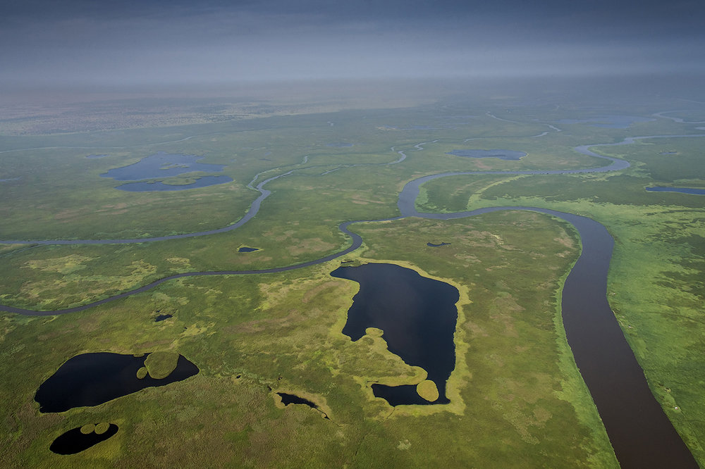 The Sudd, the heart of the Nuer opposition fortress. This Arabic word derived from sadd means barrier or obstruction. The South is a vast swamp extending from Bor to Malakal.