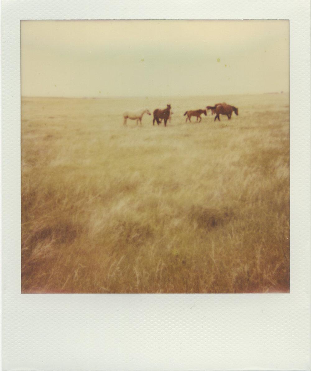 Rocky Ford, North Dakota