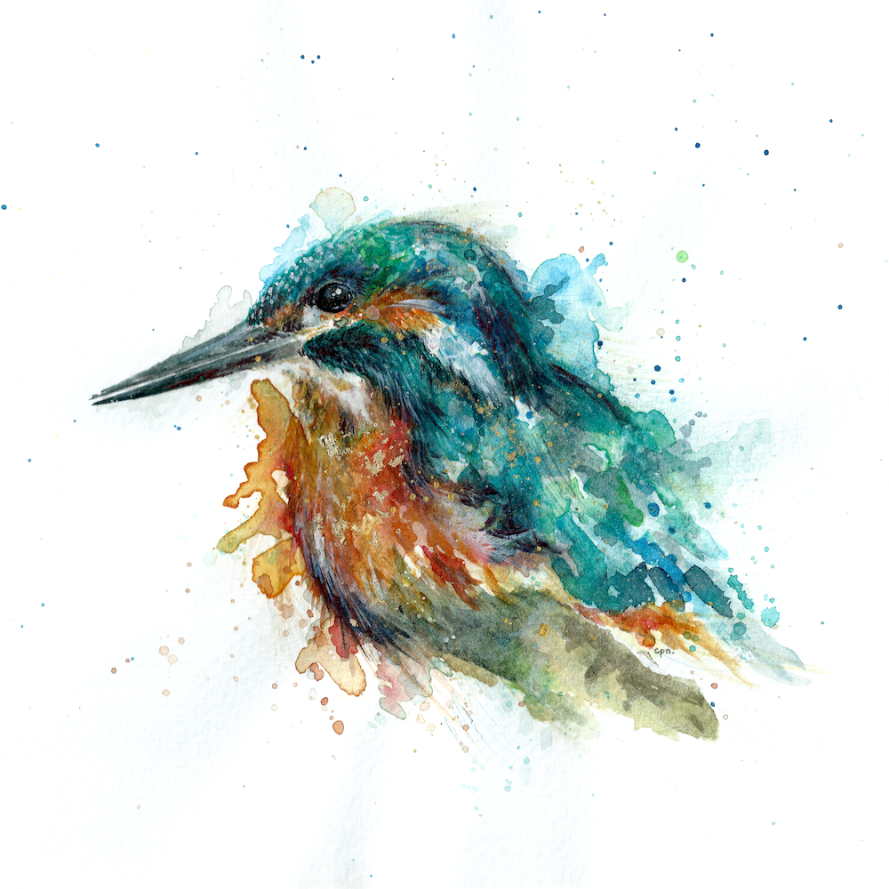 Kingfisher copy 2.png