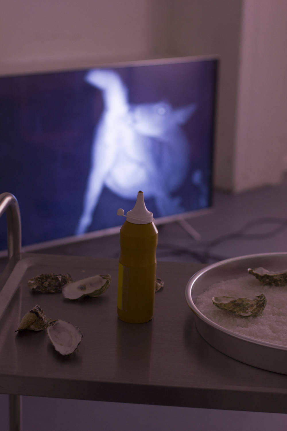 - TV:Isabella HemmersbachVariations on the asshole, 2018digital video, 1min30 (looped)Trolly:Anna Clarisse WæhrensDJ Mustard, 2018Oyster shells, sausages, mustard