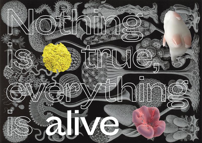 NothingIsTrue_Visual4_Horizontal02-Web.jpg