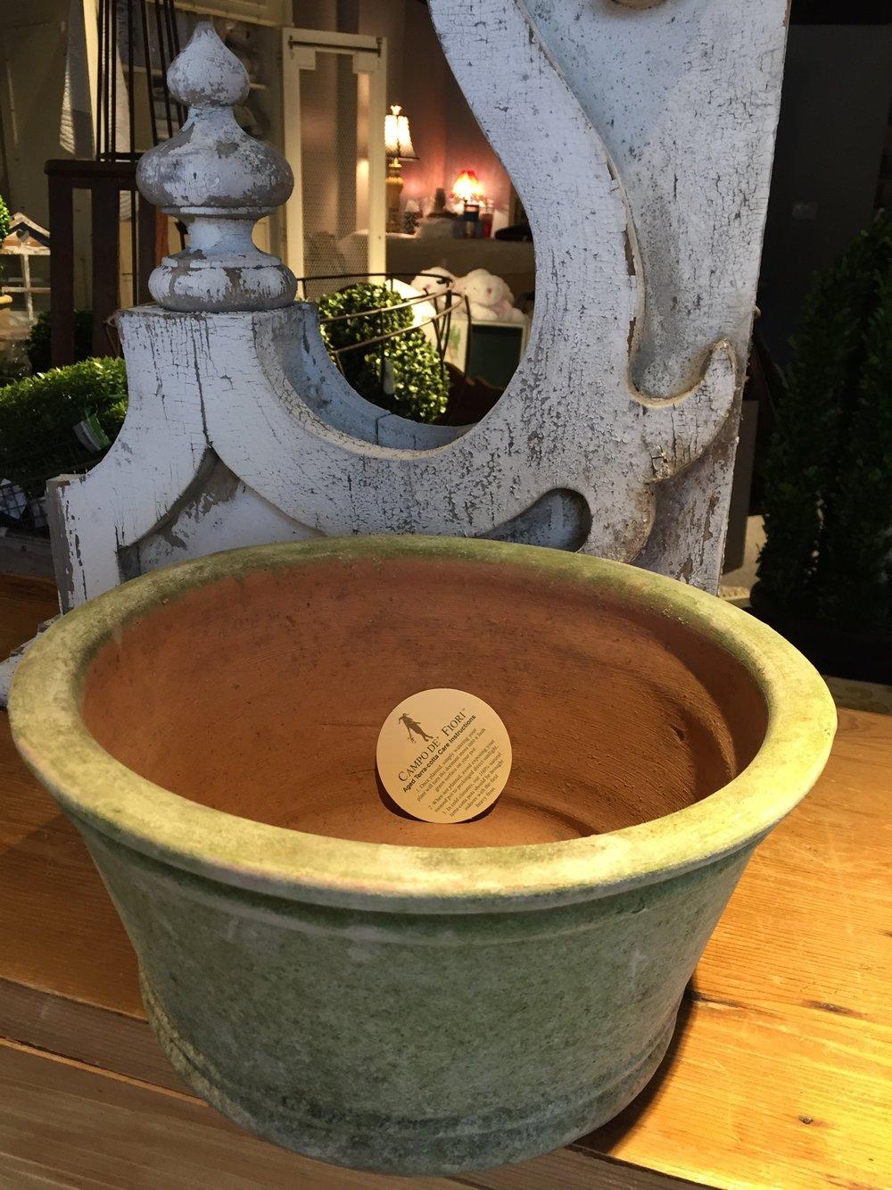 Aged Azalea Pot