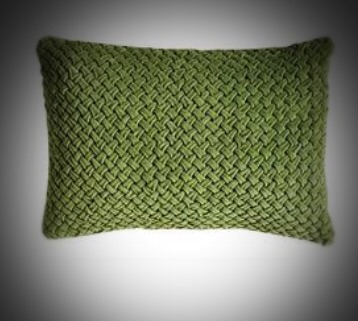 Green Cotton Velvet Pillow