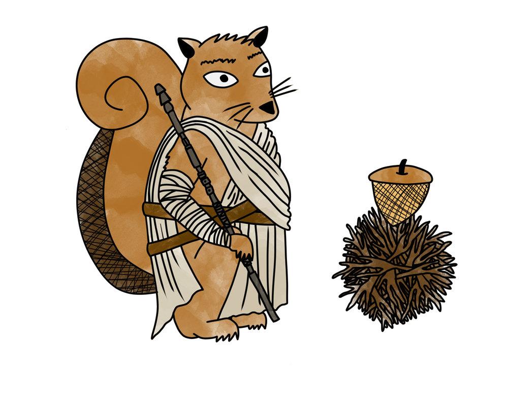 Squirrel Rey