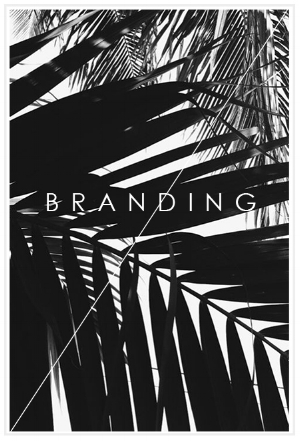 Arrow Creative Design Branding