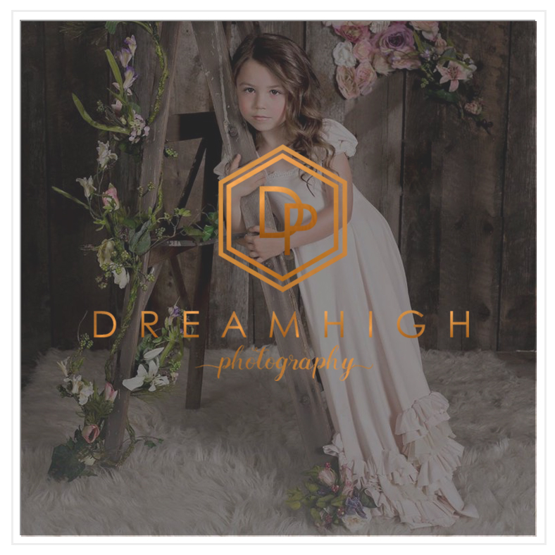 Dreamhigh Photography Logo Design