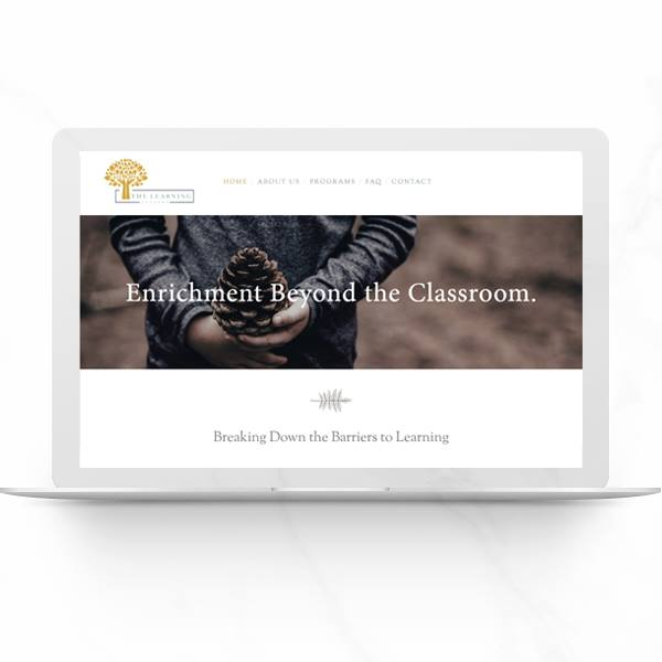 The Learning Academy website design